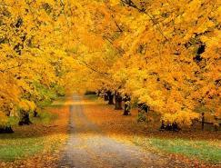 风光摄影:秋高气爽的季节