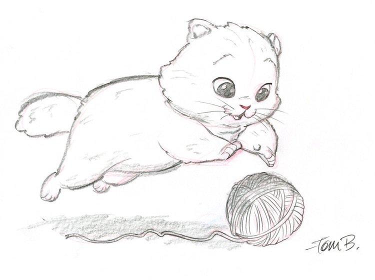 bancroft超可爱动物手绘作品