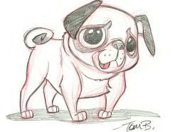 TomBancroft超可爱动物手绘作品