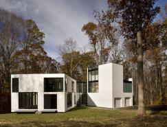 白色的几何形状与玻璃结合:Graticule林中别墅
