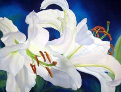 MarneyWard美丽的水彩花卉