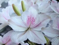 BuikoOleg花卉绘画作品