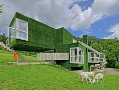 奥地利Frohnleiten人造草皮覆盖的住宅设计
