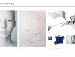 AdobeCS6形象和包装设计
