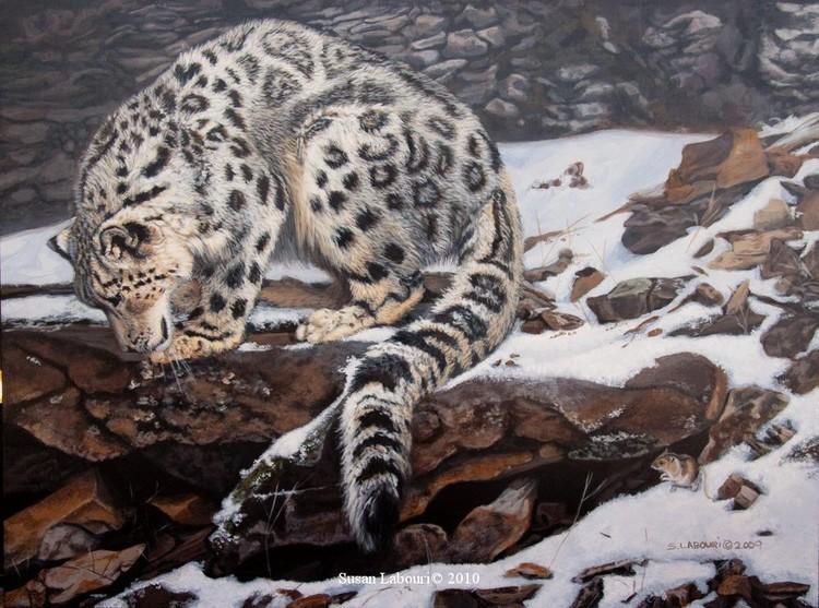 susan02labouri动物绘画作品欣赏(2)