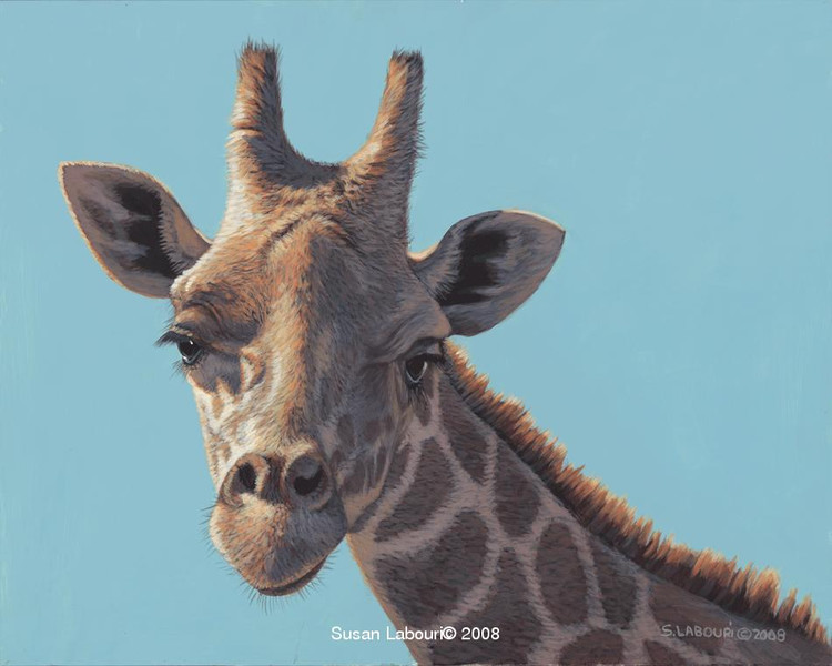 susan02labouri动物绘画作品欣赏(3)