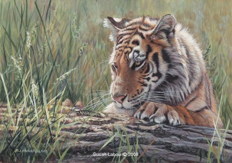 susan02labouri动物绘画作品欣赏(4)
