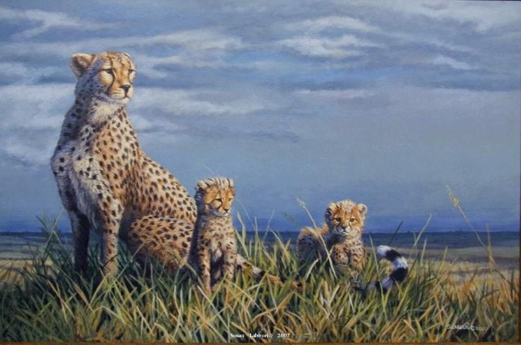 susan02labouri动物绘画作品欣赏(5)