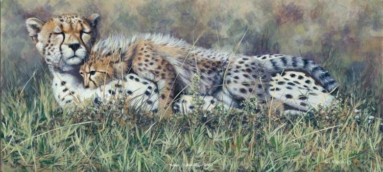 susan02labouri动物绘画作品欣赏(9)