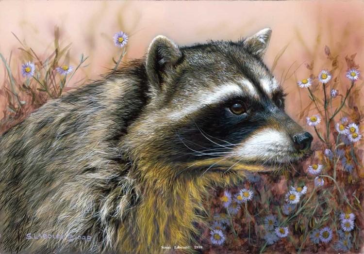 susan02labouri动物绘画作品欣赏(11)