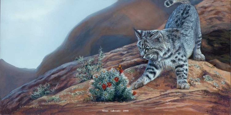 susan02labouri动物绘画作品欣赏(10)