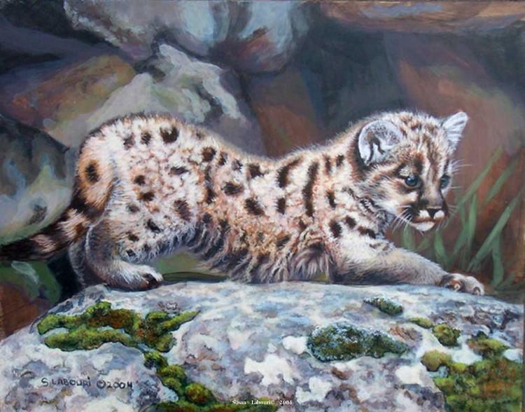 susan02labouri动物绘画作品欣赏(13)