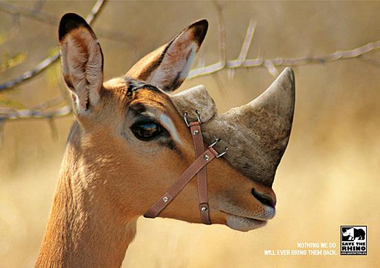40个可爱动物元素的创意广告欣赏(3)