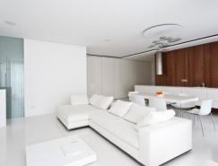 核桃木点缀的唯美白色公寓设计