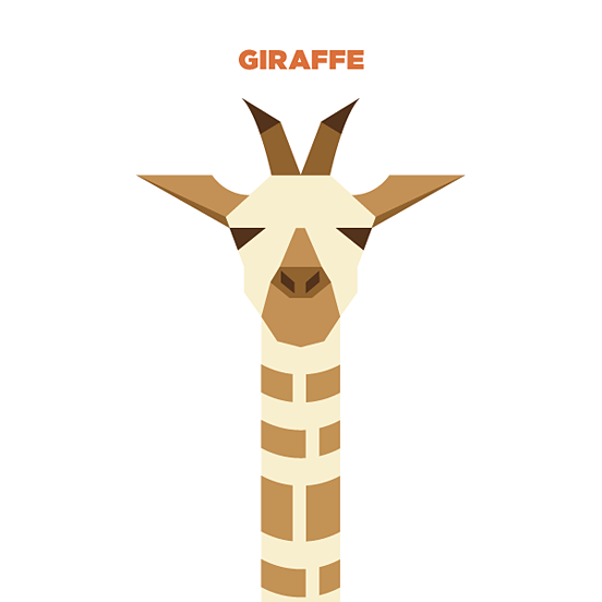 nagra简约的动物插画作品(3)