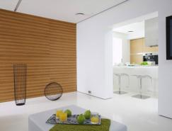 莫斯科极简主义风格白色公寓设计
