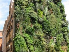 PatrickBlanc作品:垂直花园(VerticalGardens