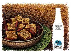印度啤酒品牌IndusPride广告欣赏