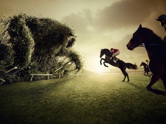 MarcdaCunhaLopes精湛的创意摄影作品