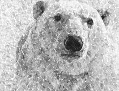 """拯救北極熊:可口可樂""""ArcticHome""""公益廣告"""