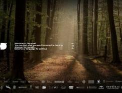 30个国外使用视频背景的网站设计