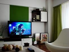 布加勒斯特精致的一居室小公寓装修设计