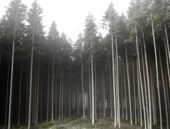 德国摄影师JurgenHeckel森林摄影