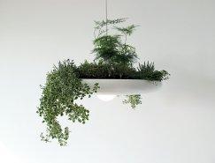 Ryan Taylor:可种植物的巴比伦灯