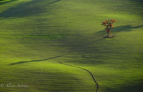 Alessio Andreani美丽风光摄影
