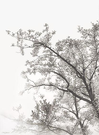 seas黑白铅笔画作品(2)