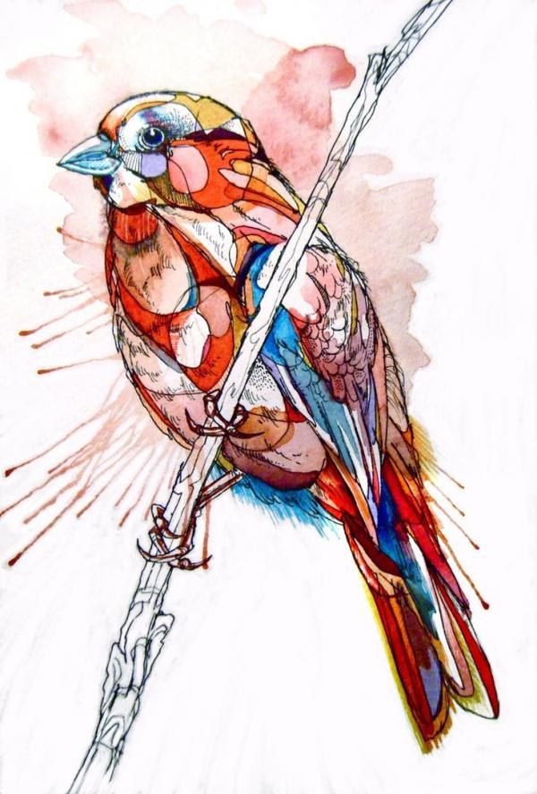 美国艺术家abby diamond动物水彩画作品(2)