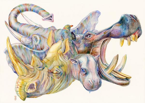 keehner水彩动物插画