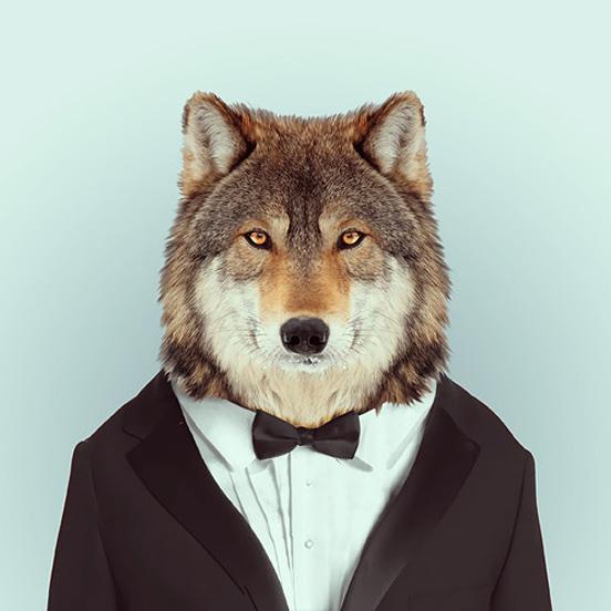 他给各种可爱的动物穿上人类服装