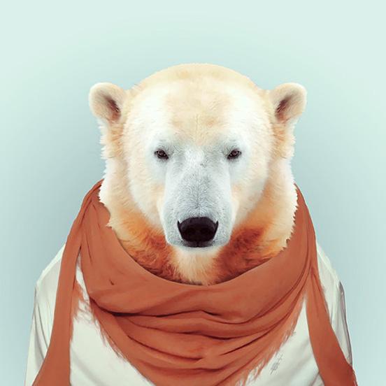 """在这组照片中,他给各种可爱的动物穿上人类服装,并让它们像人一样"""""""