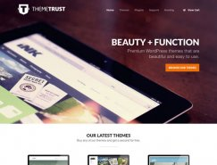 21个漂亮的大图片背景网站设计