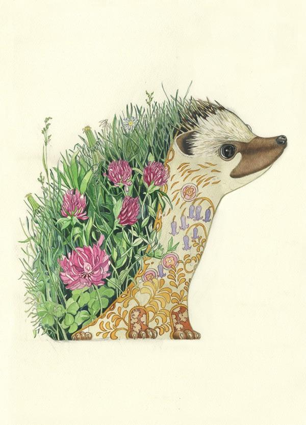 mackie创意动物水彩插画欣赏