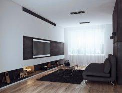 黑与白:2种不同风格的现代公寓设计