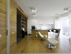 俄罗斯现代简约风格小公寓设计