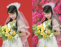 Photoshop通道快速摳出背景單一的婚紗美女