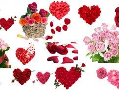 玫瑰花和荷花PSD素材