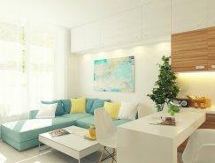 紧凑简约的29平米开放式小公寓