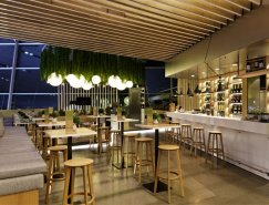 優雅的照明和綠色懸掛:ESS Zimmer現代餐廳欣賞