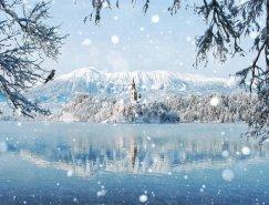 20個美妙的冬季攝影佳作