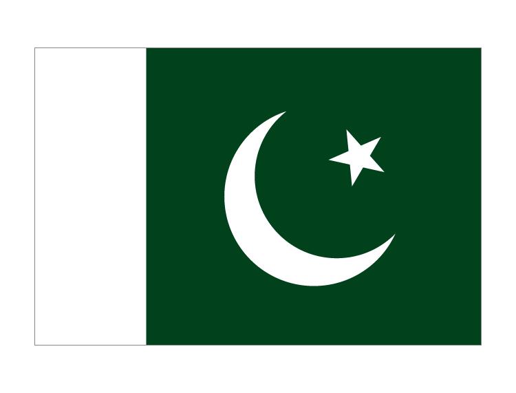 巴基斯坦國旗矢量圖