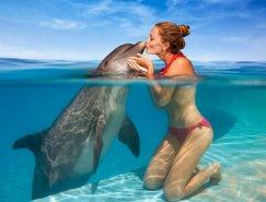 50张美丽的动物摄影作品欣赏