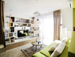 罗马尼亚40平米小公寓设计