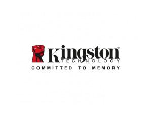 Kingston金士顿标志矢量图