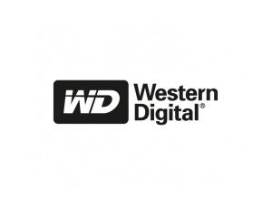 西部数据(Western Digital)标志矢量图