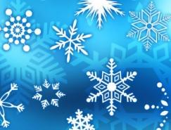 漂亮的雪花PS形状