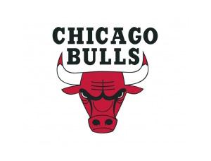 NBA:芝加哥公牛队标志矢量图